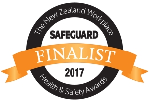 safeguard awards finalist logo 300